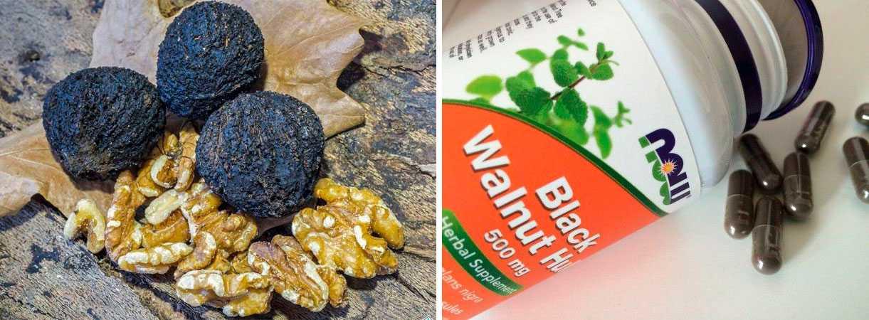 Черный орех айхерб: 7 уникальных и доступных БАД