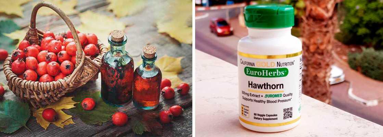 Рейтинг топ-10 лучших препаратов из боярышника на сайте iHerb